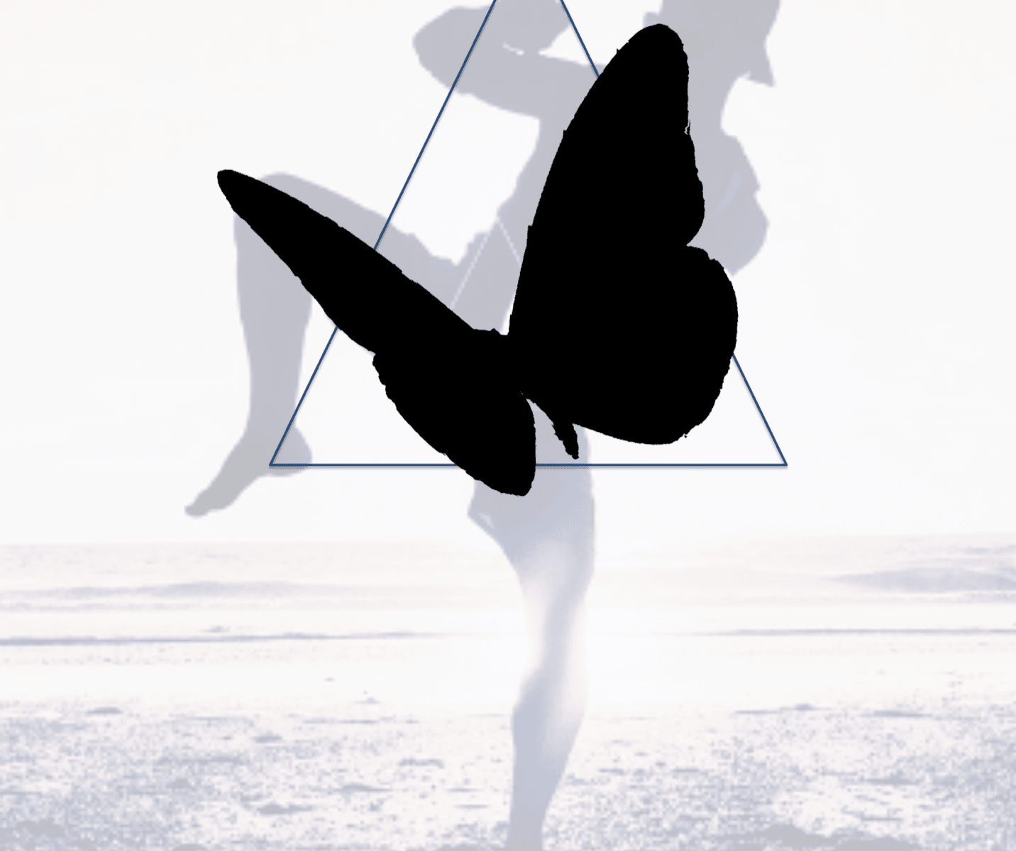 Vole Comme Le Papillon